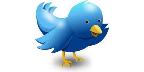 twitter vogel